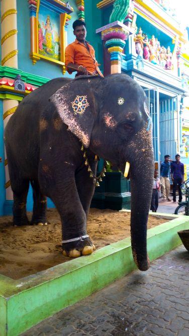 Pondichery - 013