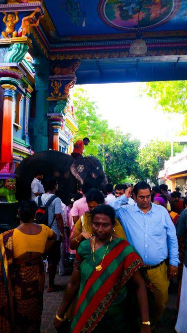Pondichery - 014